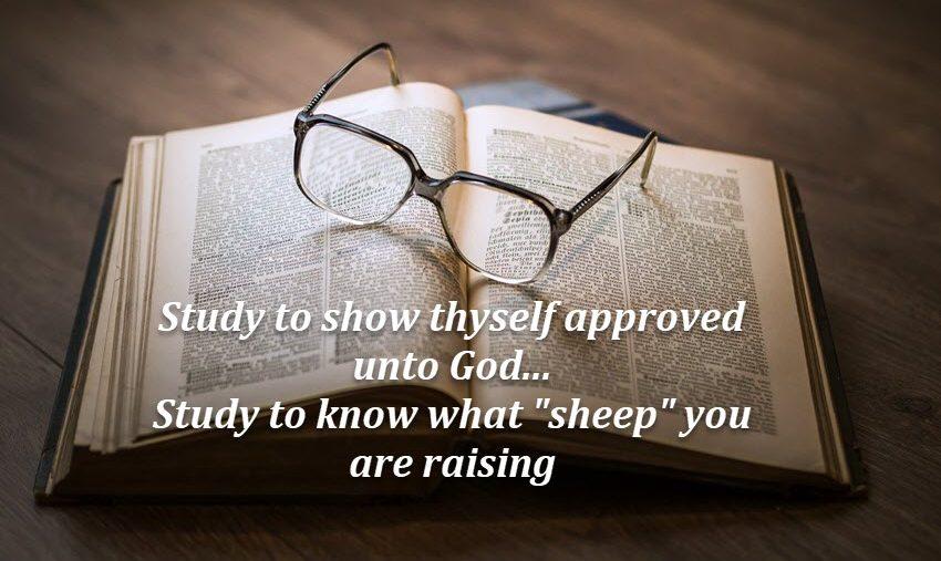 Study God's Word to glean wisdom