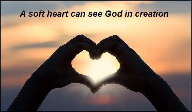 Soft hearts see God