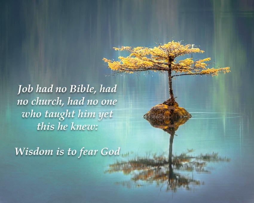 Need wisdom? Fear God!